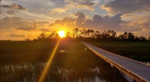 Hunting Island's Marsh Boardwalk Trail In South Carolina Leads To Incredibly Scenic Views