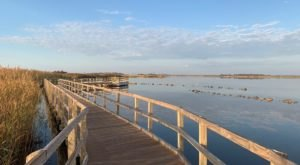 Enjoy Unspoiled Beaches And Ocean Views At The Back Bay National Wildlife Refuge In Virginia