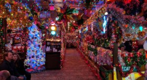 With Over 200,000 Lights, Campo Verde Is The Most Festive Restaurant In Texas