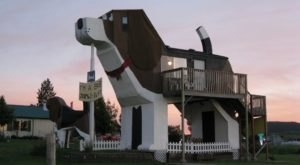 There's A Dog-Themed Airbnb In Idaho And It's The Perfect Little Hideout