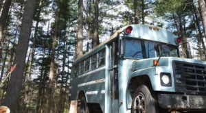 If You'd Never Consider Sleeping In A School Bus In The Forest In North Carolina, You'll Think Again After Seeing This One