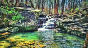 The 3-Mile Moss Rock Preserve Trail In Alabama Takes You Through An Enchanting Forest