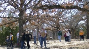 Enjoy A New Year's Day Hike At One Of These Oklahoma State Parks