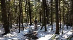 Explore More Than 47 Miles Of Trails All Winter Long At Dolly Sods Wilderness In West Virginia