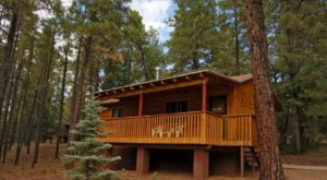 Spend The Night In A Woodsy Mountain Cabin At Whispering Pines Resort In Arizona