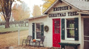 Take A Sleigh Ride Through An Idyllic Christmas Tree Farm At Krueger's Tree Farm In Minnesota