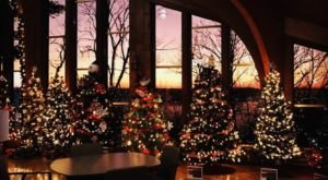 Christmas Trees Fill The Lodge At General Butler State Resort Park In Kentucky This Season