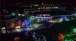 The Akron Zoo In Ohio Is Decked Out In Thousands Of Glittering Lights For Your Holiday Enjoyment