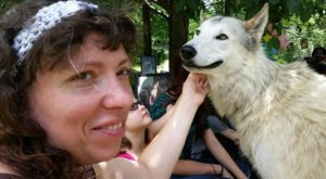 Camp With Magnificent Real Wolves At Saint Francis Wolf Sanctuary In Texas