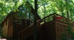 Sleep Among Towering Trees At Moss Hill Chalet In West Virginia