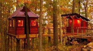 Sleep Among Towering Trees At Ozark Tree Suite In Missouri