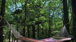 The Choctaw Treehouse Is An Oklahoma Airbnb That Sways With The Trees In The Wind
