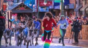 Run With The Reindeer During Fur Rondy, The 85-Year-Old Alaska Winter Festival