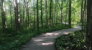 The Boardwalk Hike Near Pittsburgh That Leads To Incredibly Scenic Views