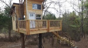 Check Out This Oklahoma Airbnb With Tree Trunks Going Through The Deck