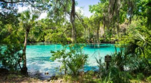 12 Unforgettable Florida Day Trips, One For Each Month Of The Year