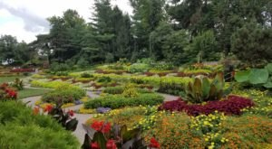 Sunken Gardens Is A Scenic Outdoor Spot In Nebraska That's A Nature Lover's Dream Come True