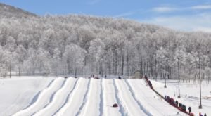 5 Winter Attractions For The Family In West Virginia That Don't Involve Long Lines At The Mall