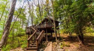 Sleep Among Towering Trees At Fernstone Treehouse In Pennsylvania
