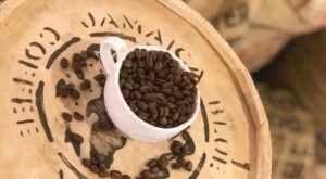 Sip On Fresh Coffee Roasted Daily At The Alaska Coffee Roasting Co. In Fairbanks