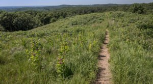 This Little-Known Hill In Minnesota Rises High Above The Landscape For Amazing Views In Every Direction