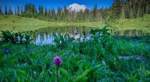 12 Unforgettable Washington Day Trips, One For Each Month Of The Year