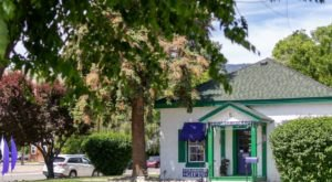 The Purple Avocado, One Of Nevada's Most Charming Shops, Is Located In A 1860s Historical Home