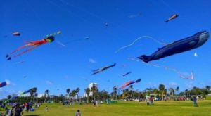Bring The Whole Family To The South's Most Colorful Festival During Kite Days Festival In Florida