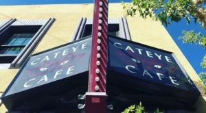 The Cateye Cafe Is A Completely Cat-Themed Catopia Of A Cafe In Montana