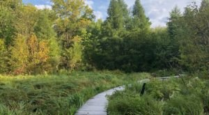 7 Cool And Calming Hikes To Take In Minnesota To Help You Reflect On The Year Ahead