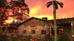 Eat Scrumptious Burgers Next To Dragons And Palm Trees At Bohemian Pizza, A Quirky Eatery In Connecticut