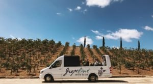 Road Trip To 4 Different Wineries On This Northern California Wine Shuttle
