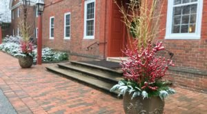 Find Gardening Inspiration Even In The Dead Of Winter At Delaware's Gorgeous Mt. Cuba Center