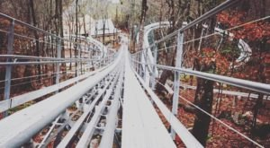 Next Month, North Carolina Is Getting Its First Ever Alpine Coaster, Wilderness Run Alpine Coaster