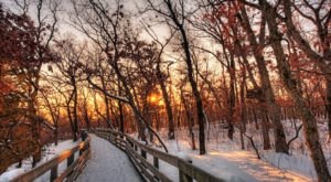 7 Illinois Attractions That Will Cure Your Cabin Fever During Harsh Winter Months