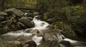 7 Cool And Calming Hikes To Take In Tennessee To Help You Reflect On The Year Ahead