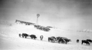Over 70 Years Ago, Nebraska Was Hit With The Worst Blizzard In Its History