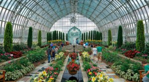 Experience The Tropics Without Ever Leaving Minnesota When You Visit Marjorie McNeely Conservatory
