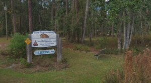Camp Chowenwaw Park In Florida Is A Historic Campground From The 1930s