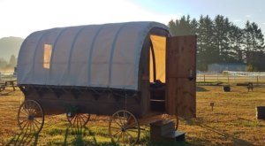 Stay The Night In A Old-Fashioned Covered Wagon At Twins Ranch In Oregon