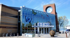 Spend The Day Discovering Wonders Of The World At The ECHO Leahy Center in Vermont