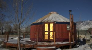Sleep In The Mountains Alongside Friendly Llamas At The Sun And Moon Yurt In Wyoming