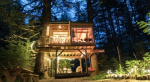 The Magical Treehouse At The Base Of Mount Hood In Oregon Lets You Glamp In Style