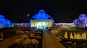 Illuminate Your Winter By Attending Buffalo's Annual Magical Lumagination Event At The Gardens