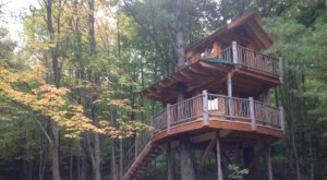 Sleep Among Towering Maple And Pine Trees At The Moose Meadow Tree House In Vermont