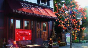 Eat Scrumptious Burgers Next To Monkeys At Three Monkeys Cafe, A Quirky Eatery In Pennsylvania