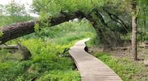 Take A Hike Through Lebanon Hills Regional Park In Minnesota To Get In Touch With Nature Without Leaving The City