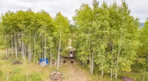 Sleep Among A Grove Of Aspen Trees At The Yur-Treat In Idaho