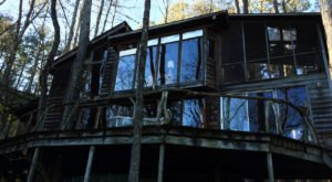 Wake Up In A Glass Treehouse At This Spectacular Airbnb In Alabama