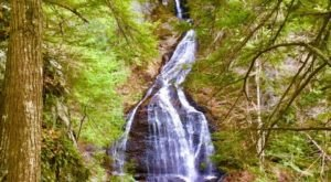 See The Tallest Waterfall In Vermont At C.C. Putnam State Forest